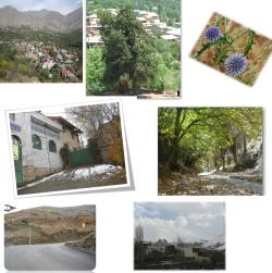 تحقیق کامل در روستا با موضوع روستای امامه